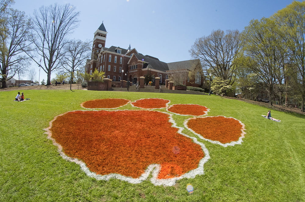 Clemson paw logo on grass